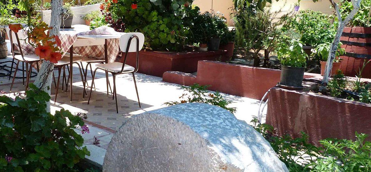garden-P1190953